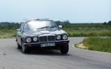 Jaguar_Emil.JPG