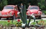 VW_Marius1.jpg
